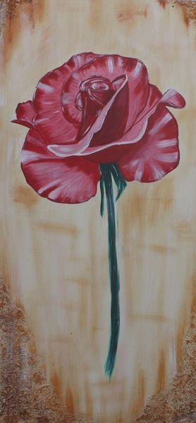 Rose-50-x-100-cm-09-2011-bild3