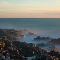 the Coast by Ivan Coric