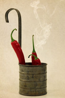 HOT by Susann Mielke