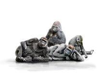 Affenbande by Werner Dreblow