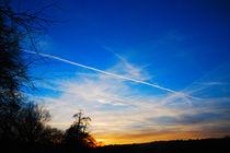 Blue Sky von Andrea Capano