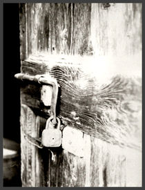 The Door von Andrea Capano