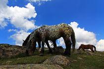 Pferde am Gipfelkreuz by Wolfgang Dufner