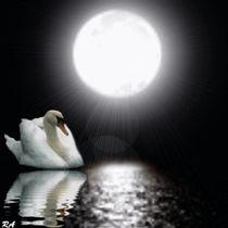 Einsame Nacht  von netteart