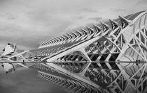 contrasto grosso by Andreas Pleines