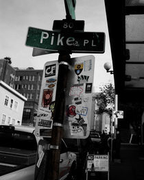 Pike PL by alyssa-kai-designs