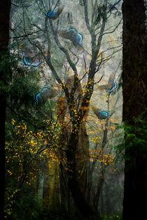 Winter Dryad von Helen K. Passey