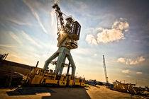 rise of the crane von Philipp Kayser