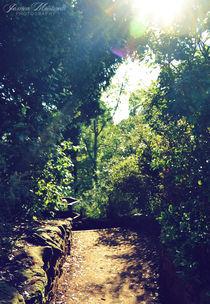 Secret Path by Jessica Montanelli