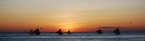 Sailing Boats on a Sunset by Jessie Aspiras