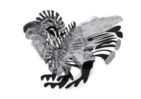 Attack-bird