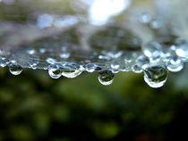 Wassertropfen im Netz by Simone Cuambe