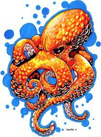 Orange Octopus by Danny Silva