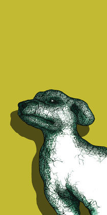 05-comp-dog