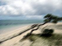 Sturm auf Mauritius - Insel - Sandstrand von Jens Berger