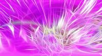 Flowerfire  by lefeber