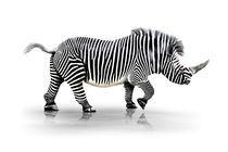 Zebra-Horn  by Werner Dreblow