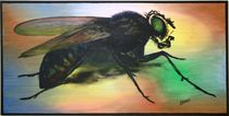 """the fly"" 100 x 50 cm 2011  von Harry Stabno"