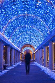 Winter Man by Amy Garwood