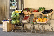 Obst & Gemüse von Rosina Schneider