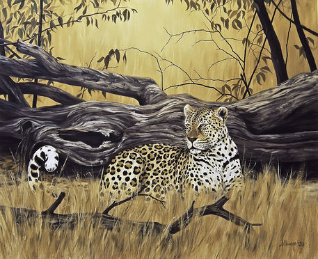 Leopard-at-dead-tree
