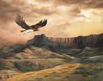 Eagle-at-sunset