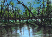 Gator Pond in Bayou by Julie Ann Stricklin von Julie Ann  Stricklin