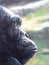Gorilla by Damaride Marangelli