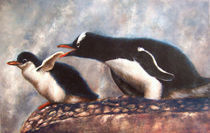 Pinguini von Damaride Marangelli
