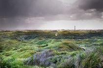 Norderney, bewachsene Dünenlandschaft III von Thomas Schaefer
