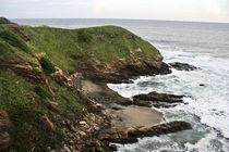 Donde las olas cantan von Julio Guajardo