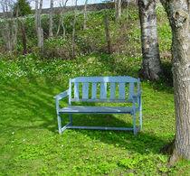 Bench by Geir Ivar Ødegaard