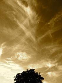 Golden Sky von Veronica Di Dato