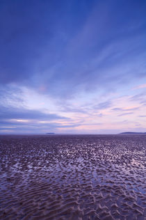 Berrow Flats, Somerset by Craig Joiner