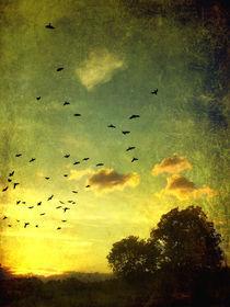 Sundownbirds-037tex
