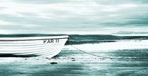 An der Ostseeküste by Matthias Rehme