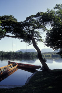 Peace on the  Rio Carrao by John Mitchell