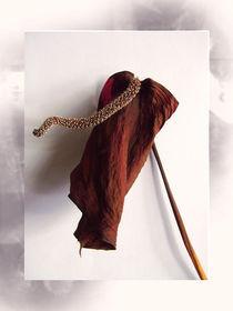 A Delicate Death by Inge Meldgaard