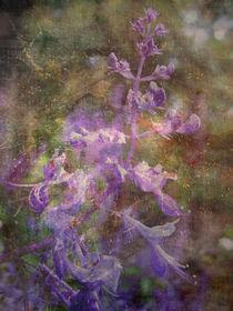 Bright Autumn by Inge Meldgaard