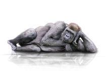 Langweilig  by Werner Dreblow