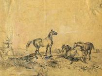 Pferdegruppezeichnung