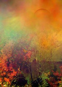Herbstlicht von Eckhard Röder