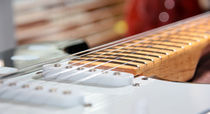 Guitar Fret by Buster Brown Photography