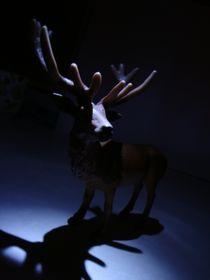 dear deer by ft