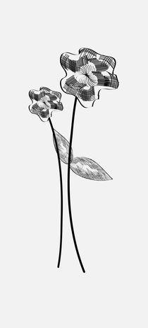 linear flowers von meri-misljen