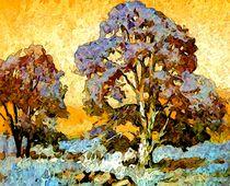Herbstlichter by Eckhard Röder