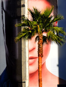 Palm Face by Brian  Leng