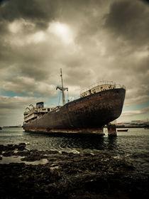 Ship Wreck by Thomas Cristofoletti