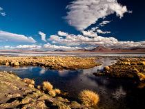 Laguna Colorada by Thomas Cristofoletti