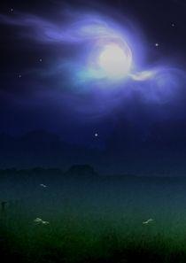 Nachtlichter by Eckhard Röder
